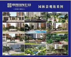(八步区)鼎晟国际花园3室2厅2卫95m²毛坯房