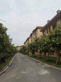 贺江-幸福里别墅急卖3层户型好南北通透有地下室和花园一百多平