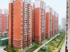 城东新区碧桂园旁绿洲家园大三房业主急售